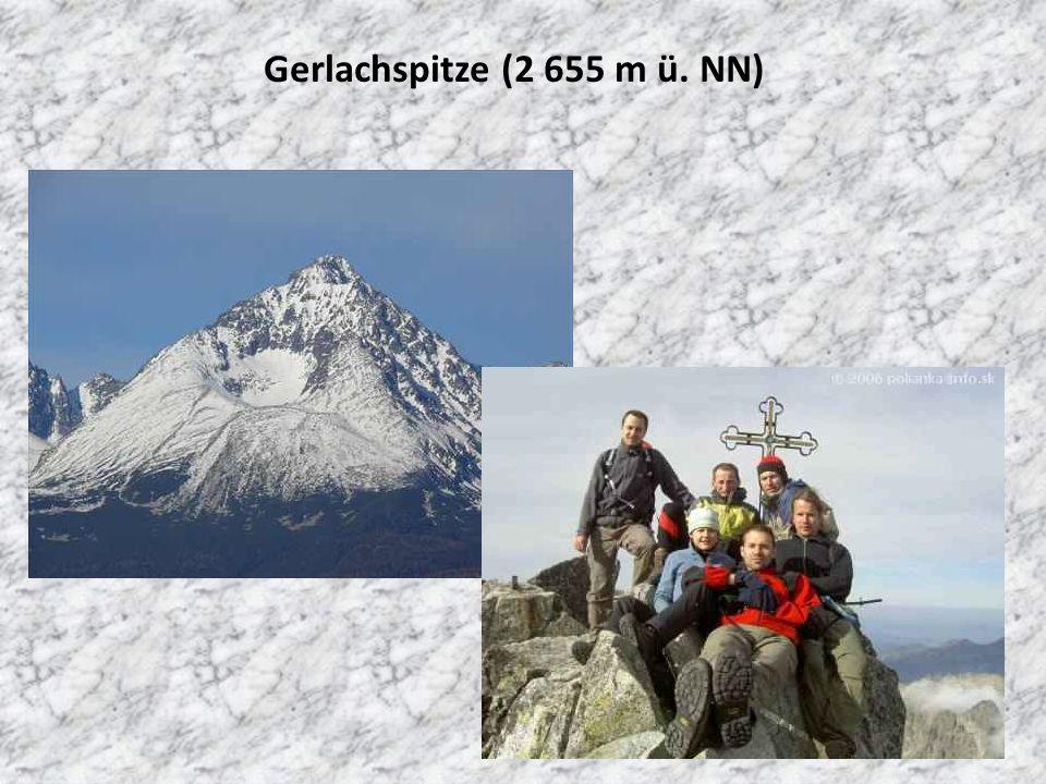 Gerlachspitze (2 655 m ü. NN)