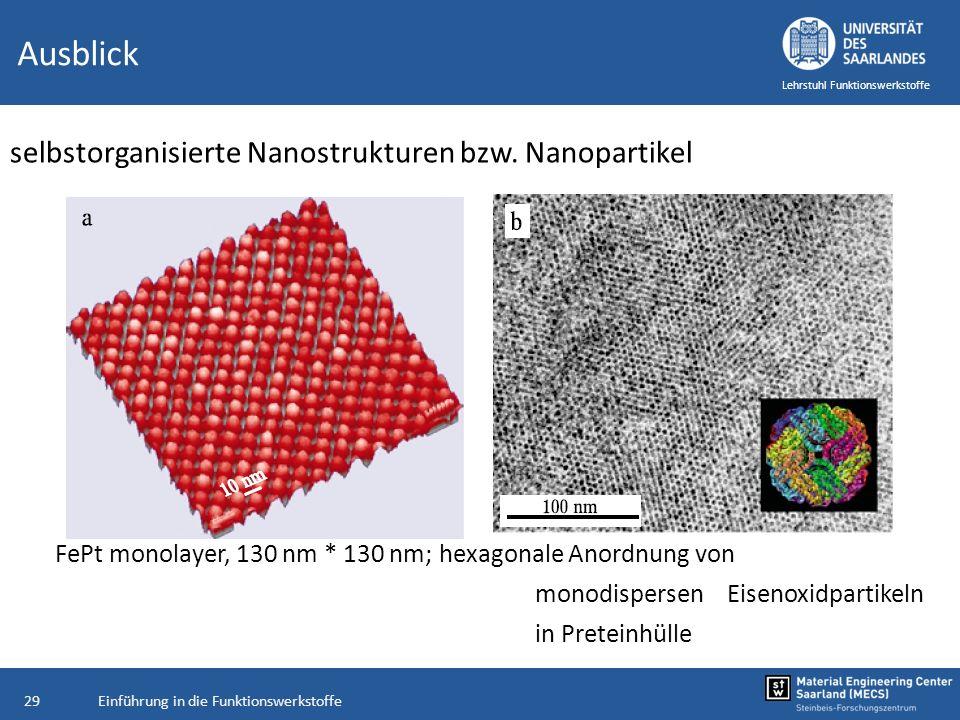 Ausblick selbstorganisierte Nanostrukturen bzw. Nanopartikel