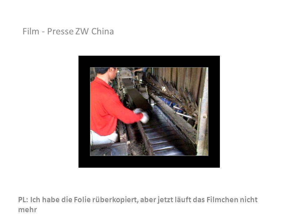 Film - Presse ZW China Auf diesem kleinen Film sehen wir die Presse, das Abschneiden der Ziegel und den Transport zum Trocknen.