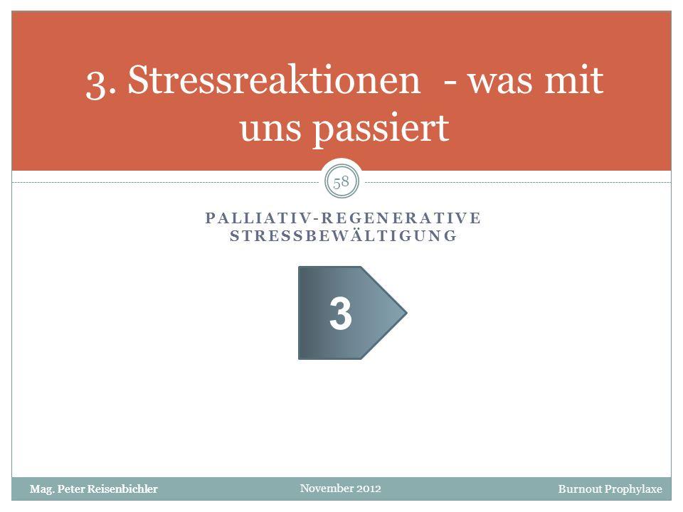 3. Stressreaktionen - was mit uns passiert