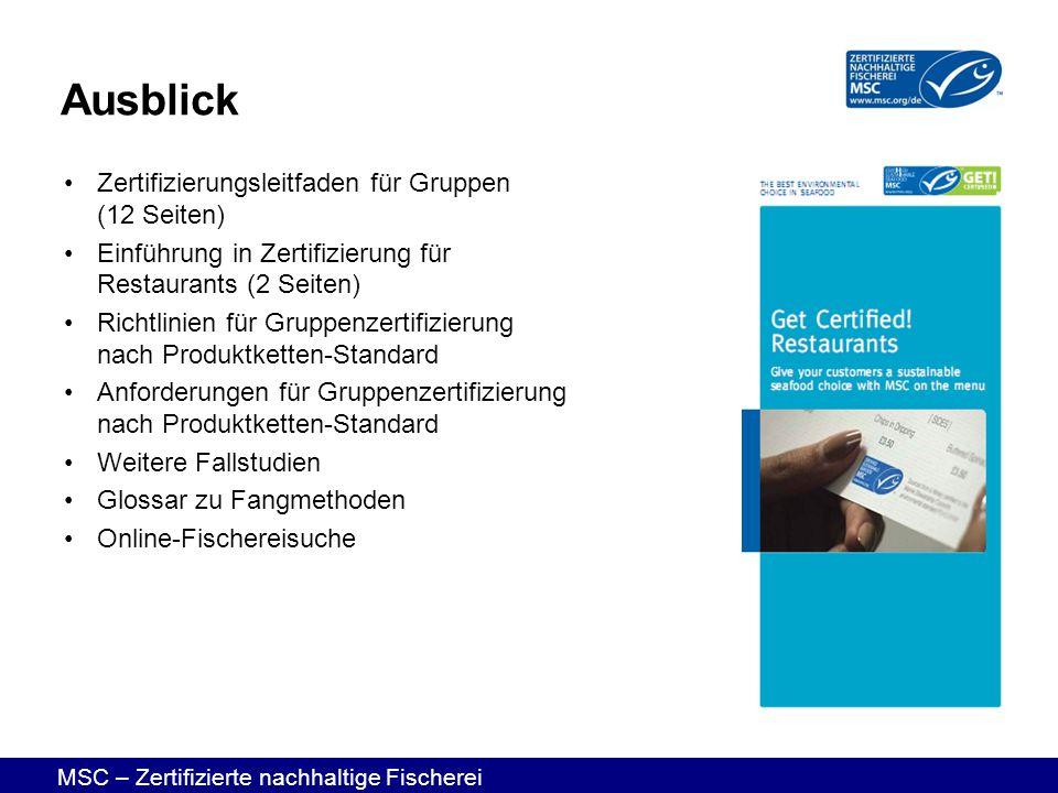 Ausblick Zertifizierungsleitfaden für Gruppen (12 Seiten)