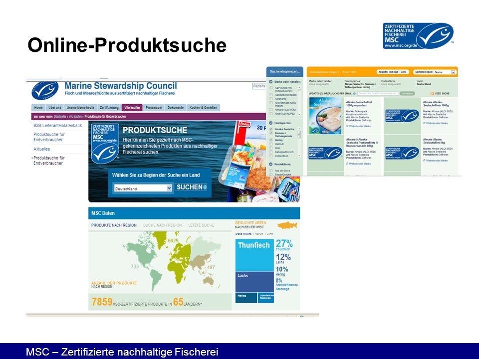 Online-Produktsuche