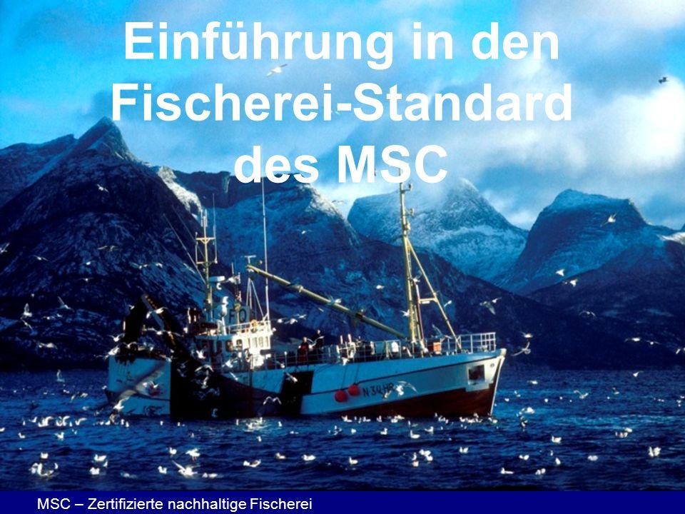 Einführung in den Fischerei-Standard des MSC