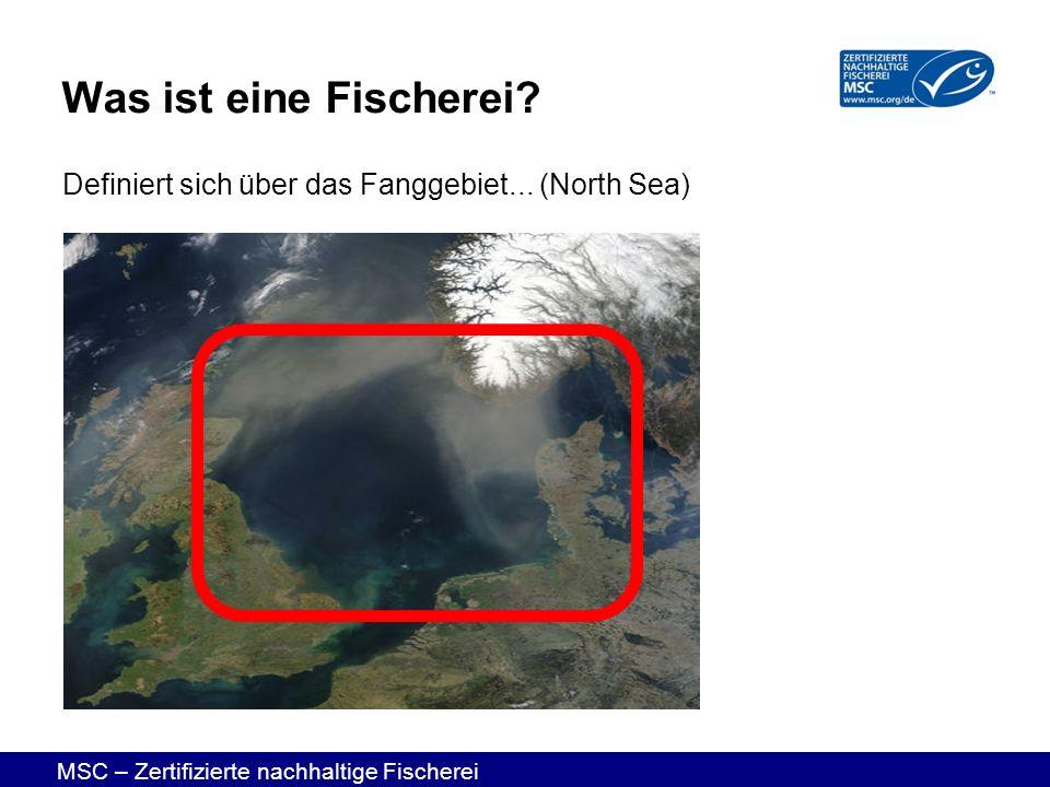 Was ist eine Fischerei Definiert sich über das Fanggebiet... (North Sea)