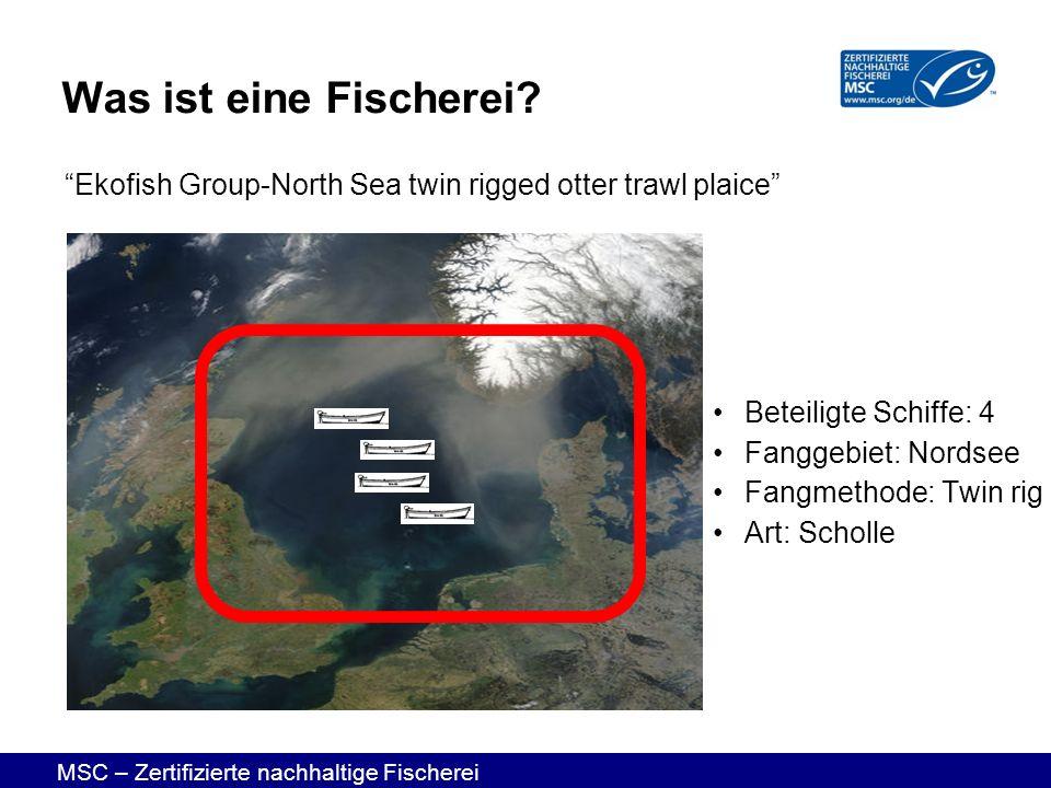 Was ist eine Fischerei Ekofish Group-North Sea twin rigged otter trawl plaice Beteiligte Schiffe: 4.