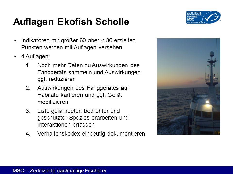Auflagen Ekofish Scholle