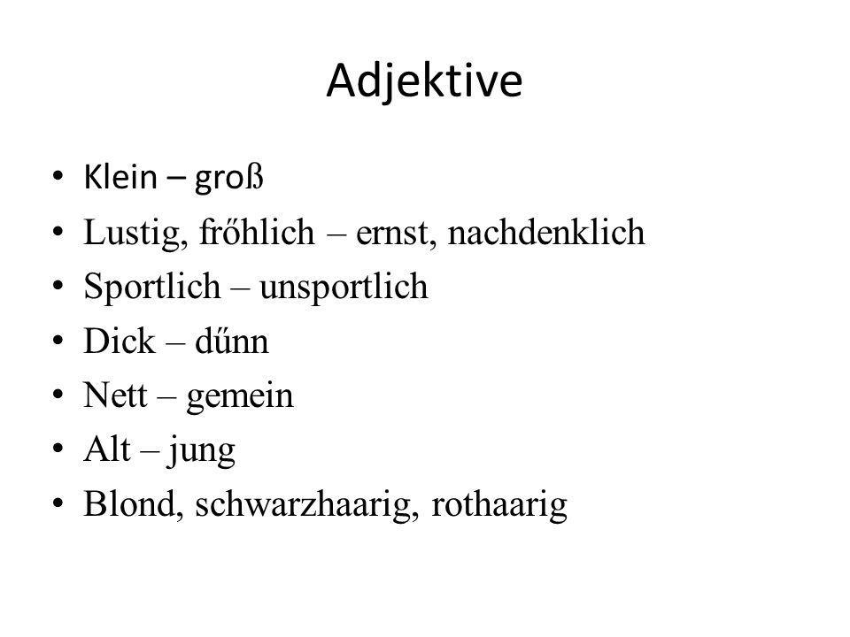 Adjektive Klein – groß Lustig, frőhlich – ernst, nachdenklich