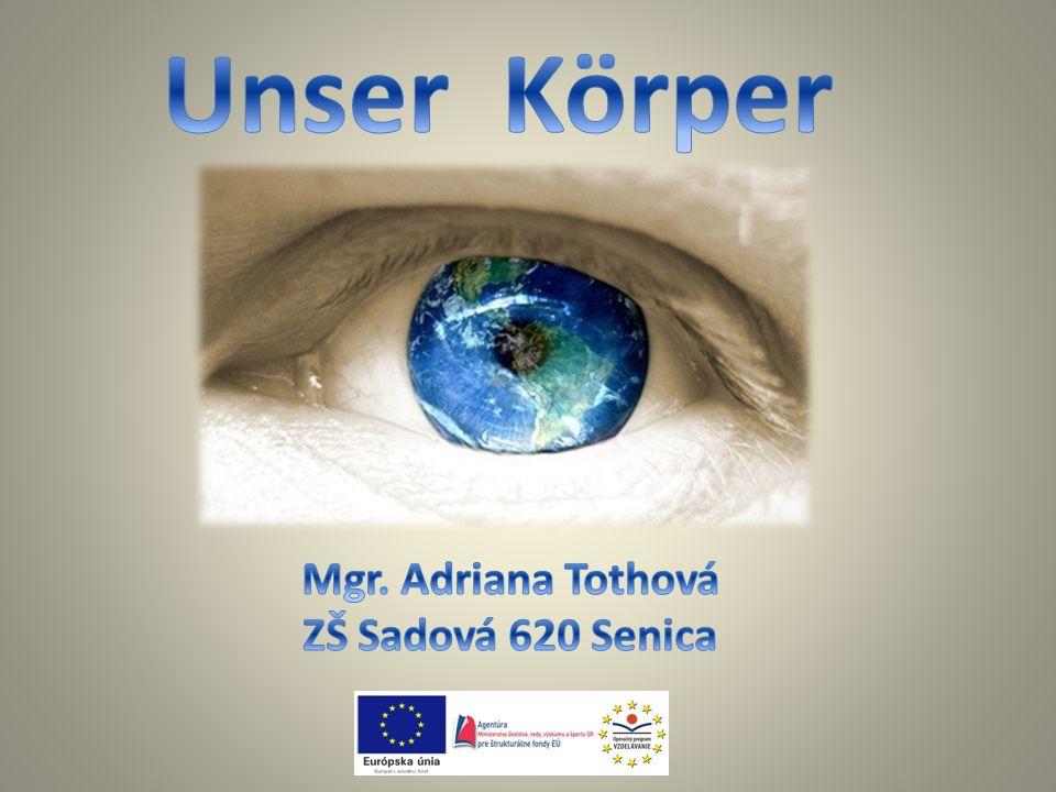 Unser Körper Mgr. Adriana Tothová ZŠ Sadová 620 Senica