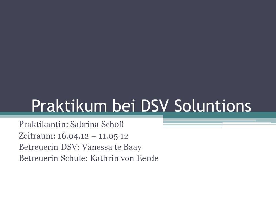 Praktikum bei DSV Soluntions