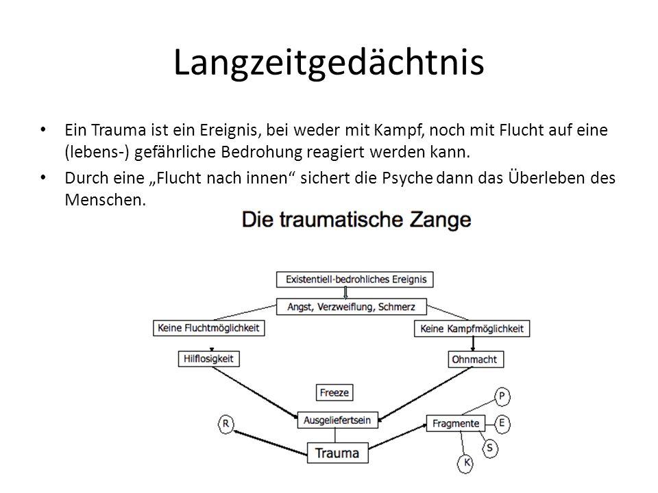 Langzeitgedächtnis Ein Trauma ist ein Ereignis, bei weder mit Kampf, noch mit Flucht auf eine (lebens-) gefährliche Bedrohung reagiert werden kann.