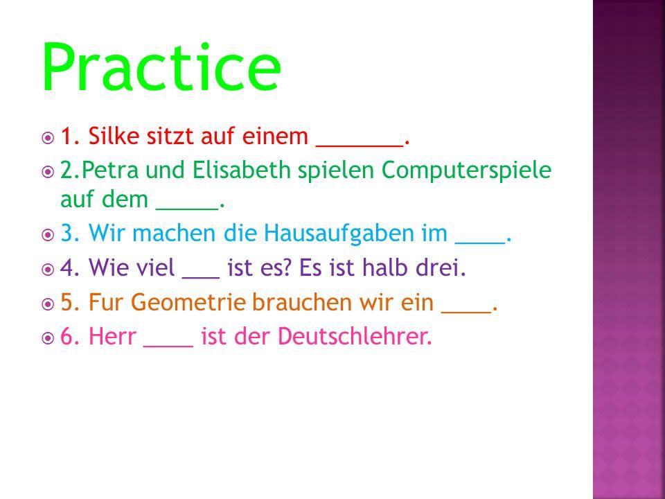 Practice 1. Silke sitzt auf einem _______.