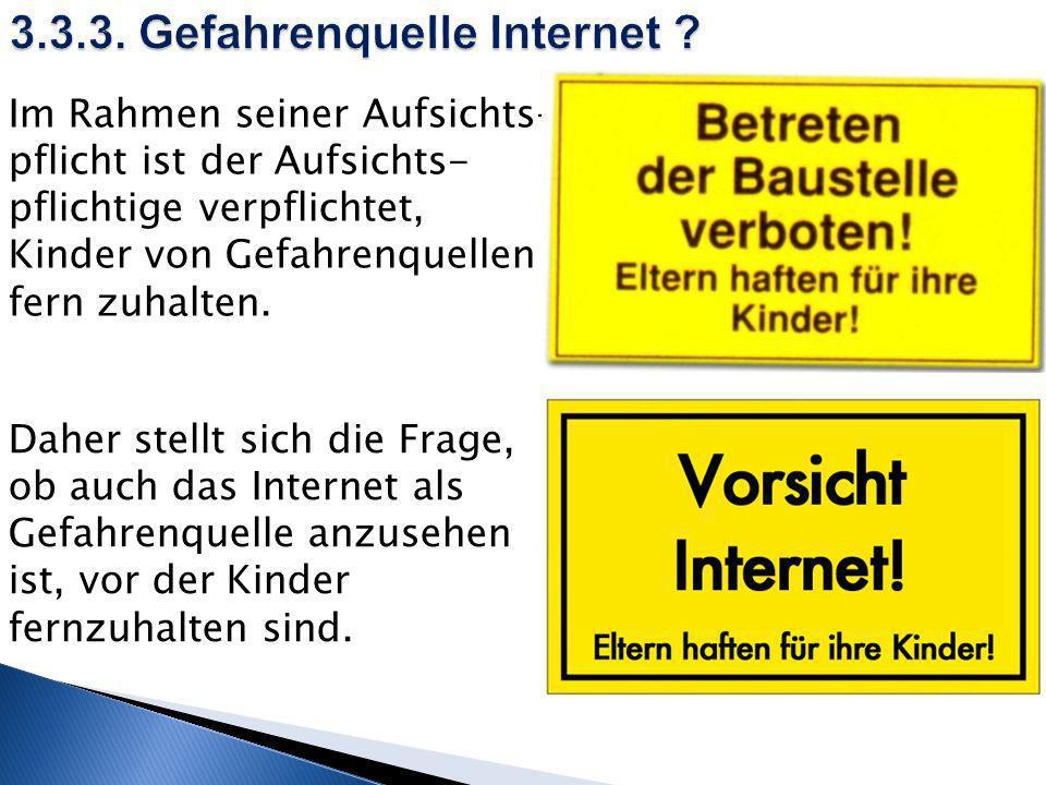 3.3.3. Gefahrenquelle Internet