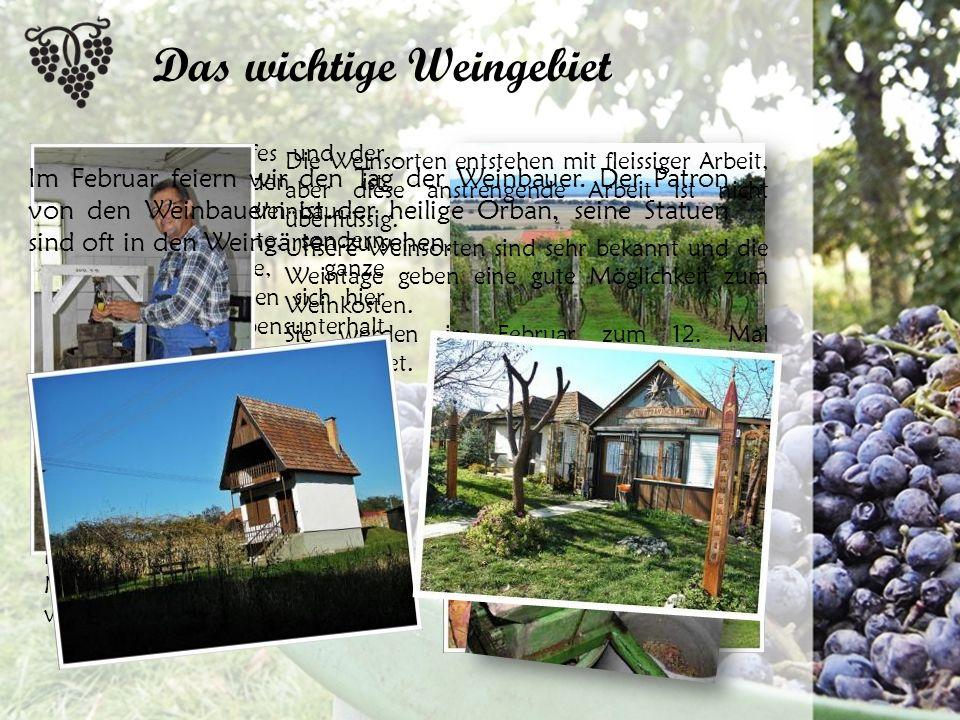 Das wichtige Weingebiet