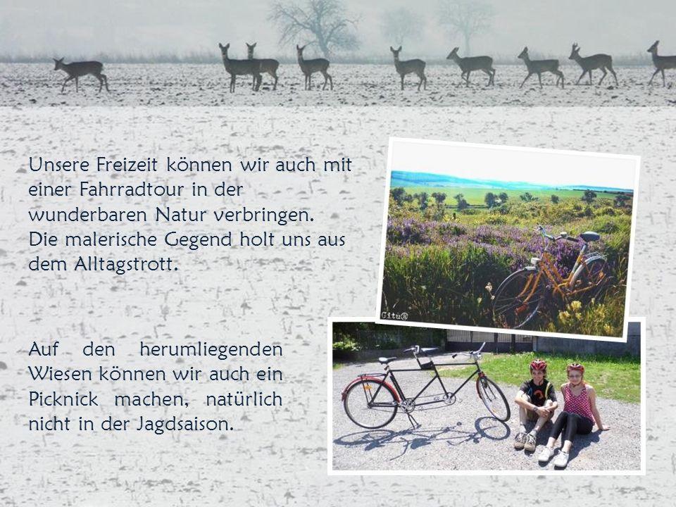 Unsere Freizeit können wir auch mit einer Fahrradtour in der wunderbaren Natur verbringen.