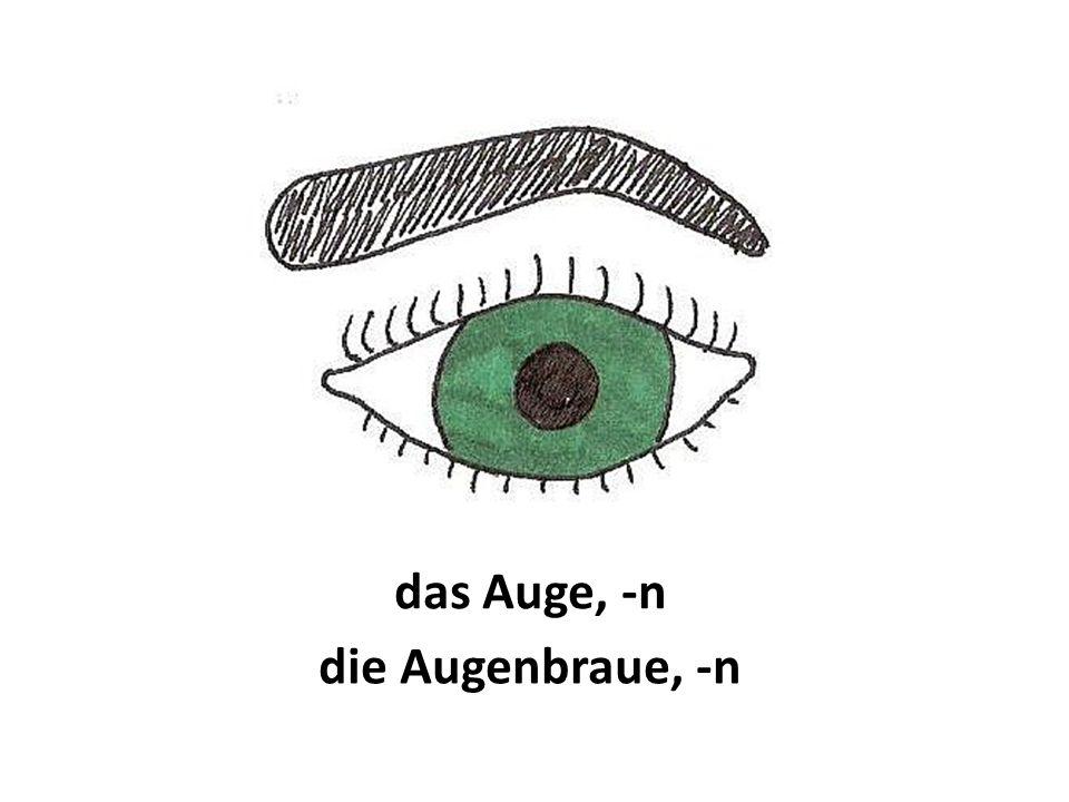 das Auge, -n die Augenbraue, -n
