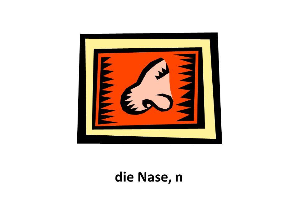 die Nase, n