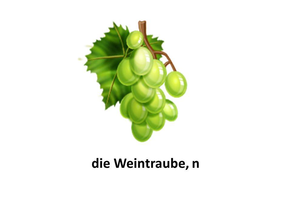 die Weintraube, n