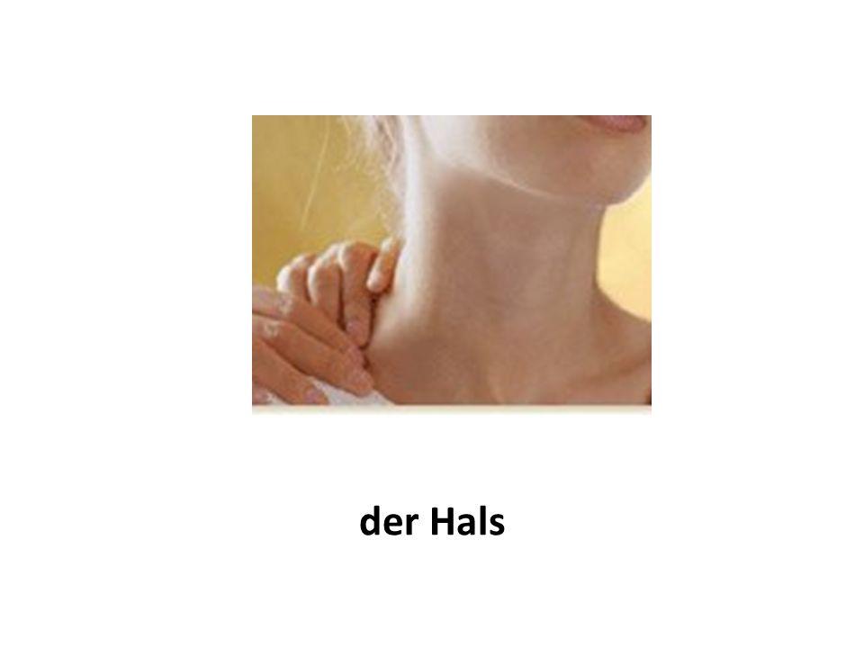 der Hals