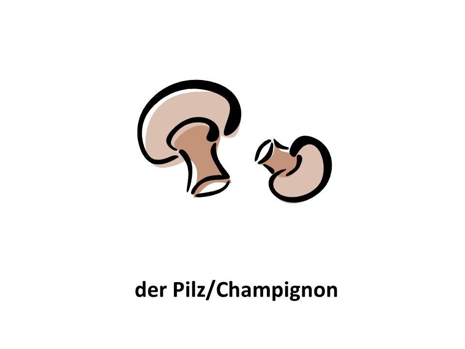 der Pilz/Champignon