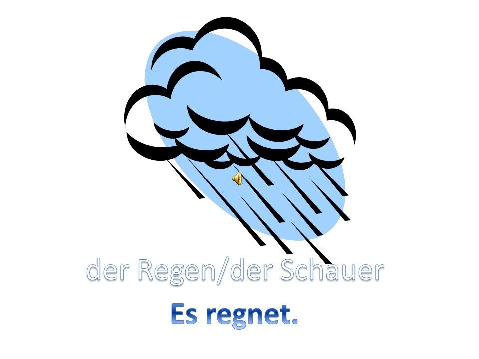 der Regen/der Schauer Es regnet.