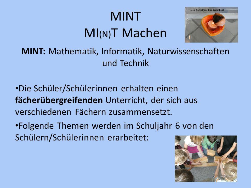 MINT: Mathematik, Informatik, Naturwissenschaften und Technik