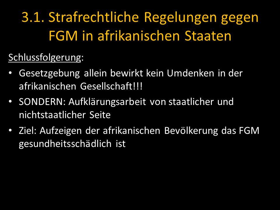 3.1. Strafrechtliche Regelungen gegen FGM in afrikanischen Staaten