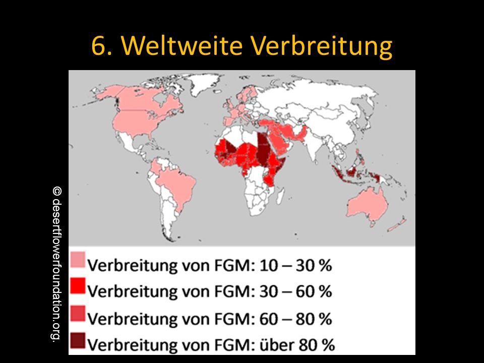 6. Weltweite Verbreitung