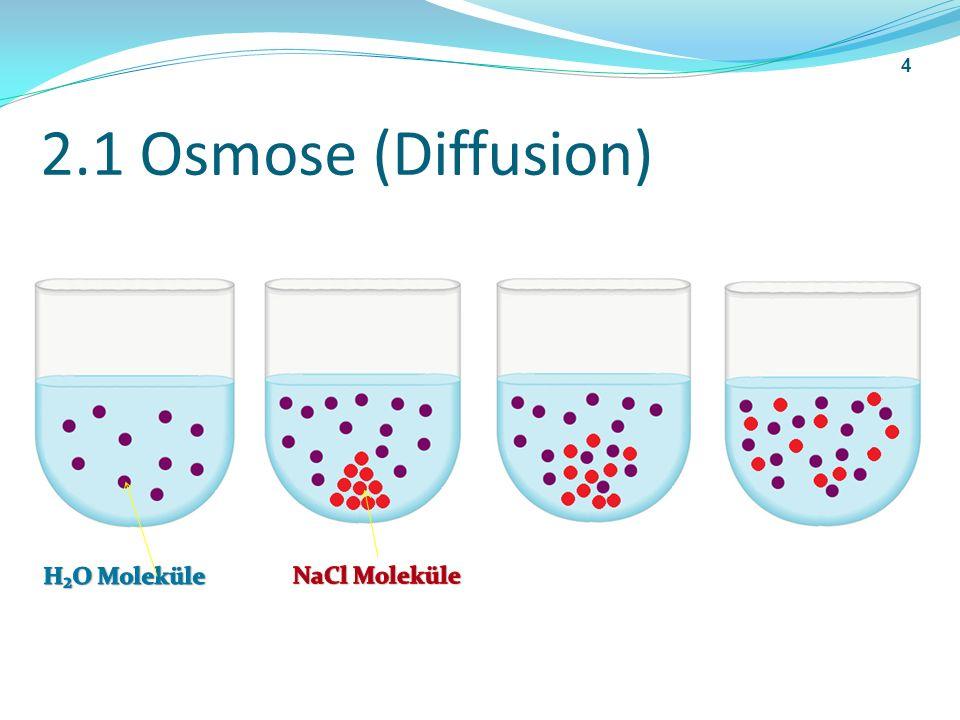 2.1 Osmose (Diffusion) H₂O Moleküle NaCl Moleküle