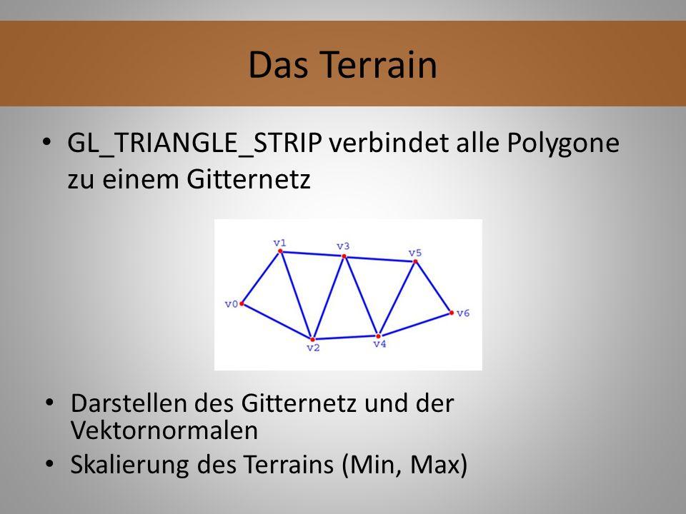 Das Terrain GL_TRIANGLE_STRIP verbindet alle Polygone zu einem Gitternetz. Darstellen des Gitternetz und der Vektornormalen.