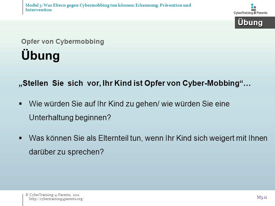 Modul 3: Was Eltern gegen Cybermobbing tun können: Erkennung, Prävention und Intervention