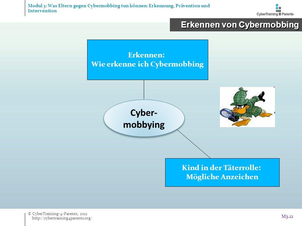 Wie erkenne ich Cybermobbing Kind in der Täterrolle: