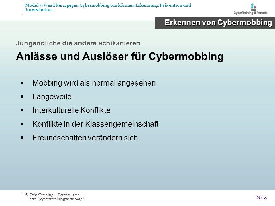 Anlässe und Auslöser für Cybermobbing