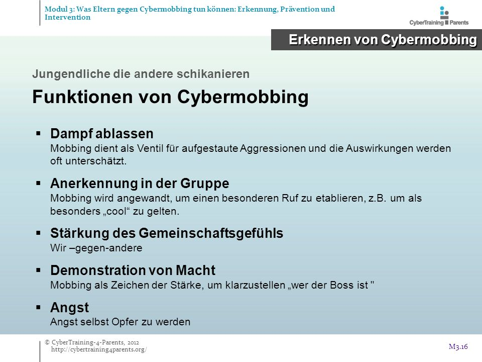 Funktionen von Cybermobbing