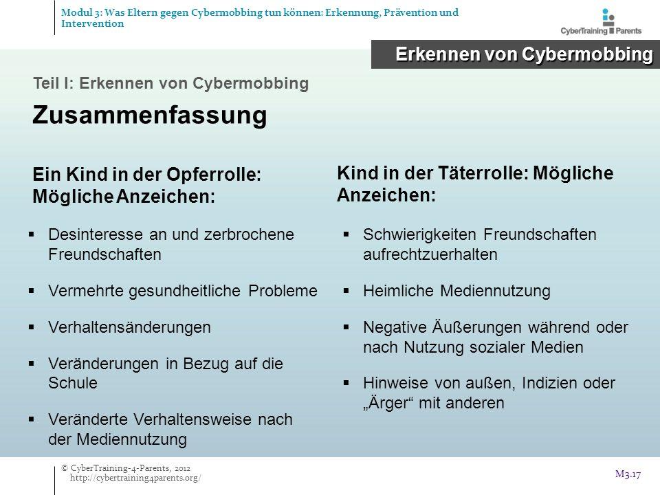 Zusammenfassung Erkennen von Cybermobbing