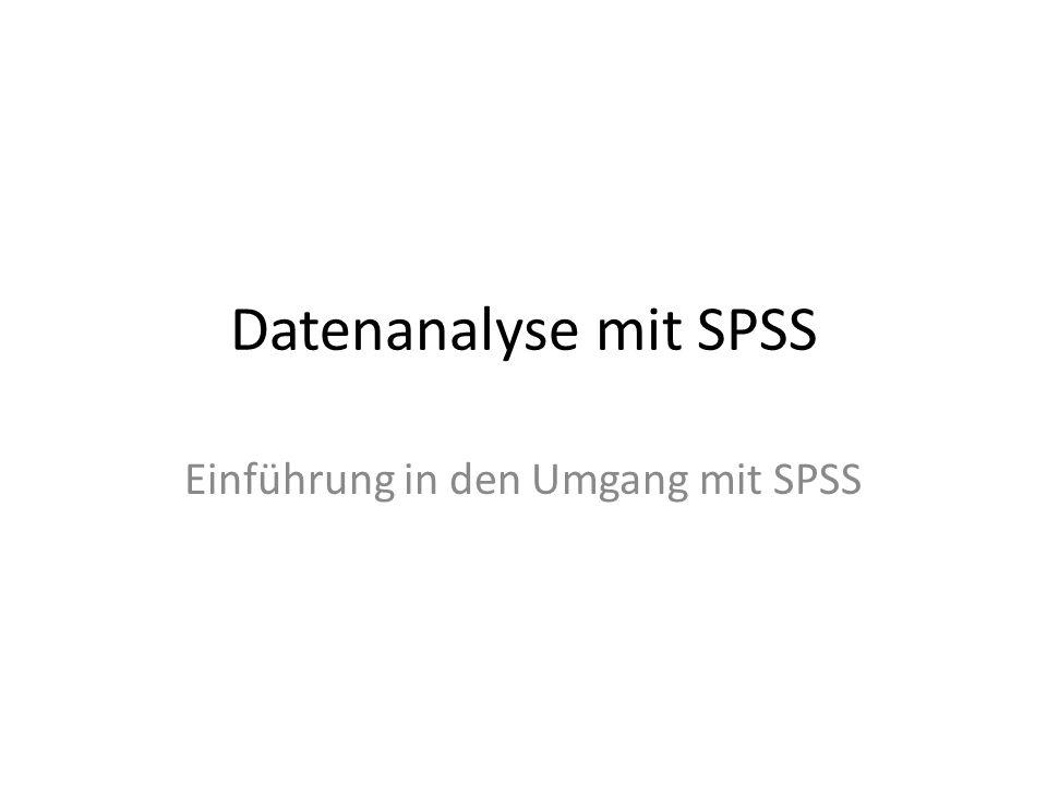 Einführung in den Umgang mit SPSS
