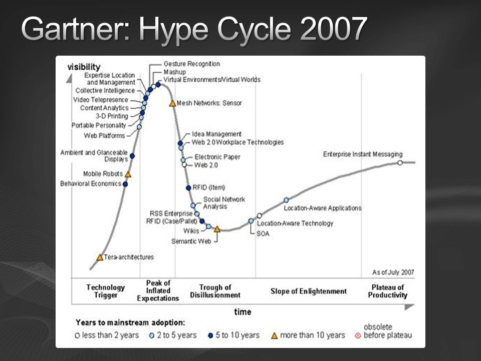 Gartner: Hype Cycle 2007