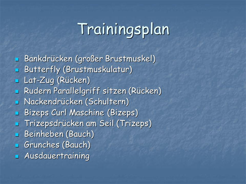 Trainingsplan Bankdrücken (großer Brustmuskel)