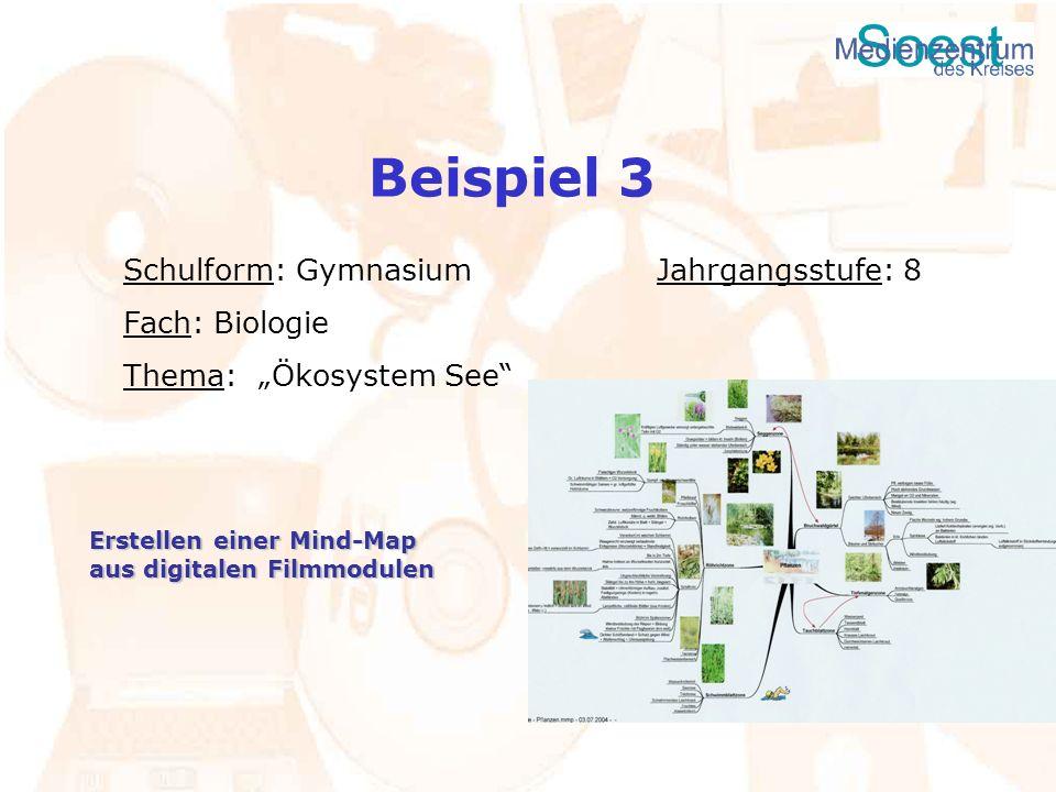 Beispiel 3 Schulform: Gymnasium Jahrgangsstufe: 8 Fach: Biologie