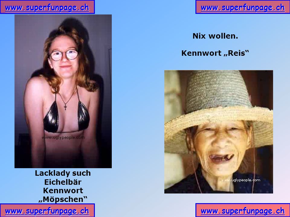 """Nix wollen. Kennwort """"Reis Lacklady such Eichelbär Kennwort """"Möpschen"""