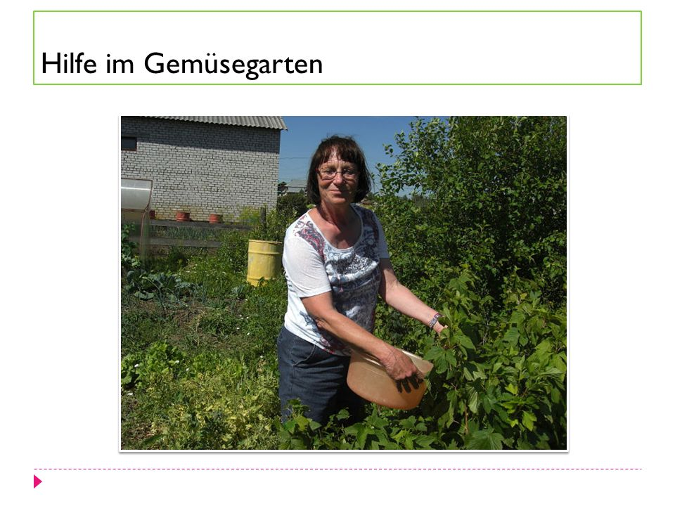 Hilfe im Gemüsegarten