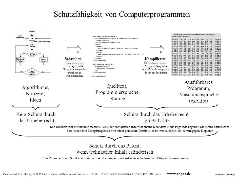 Schutzfähigkeit von Computerprogrammen