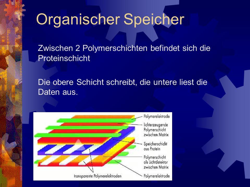 Organischer Speicher Zwischen 2 Polymerschichten befindet sich die Proteinschicht.