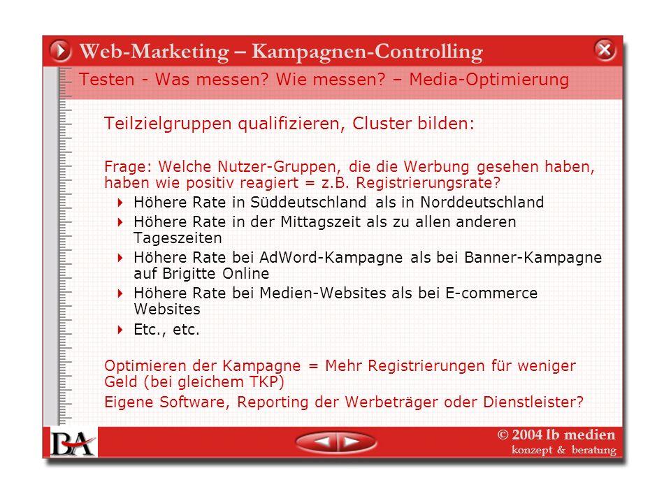 Web-Marketing – Kampagnen-Controlling