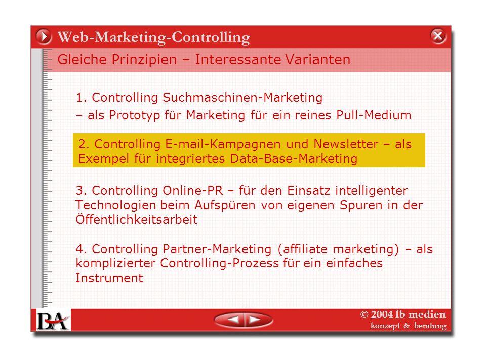 Web-Marketing-Controlling