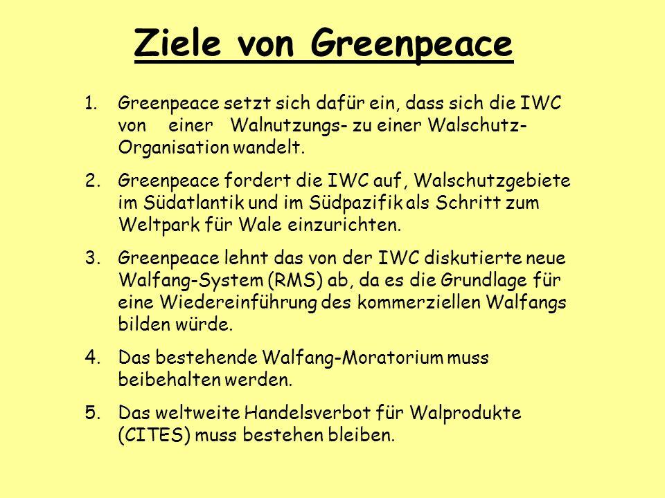 Ziele von Greenpeace Greenpeace setzt sich dafür ein, dass sich die IWC von einer Walnutzungs- zu einer Walschutz-Organisation wandelt.