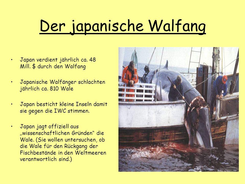 Der japanische Walfang