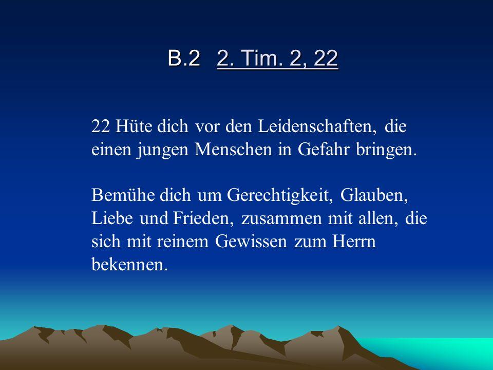 B.2 2. Tim. 2, 22 22 Hüte dich vor den Leidenschaften, die einen jungen Menschen in Gefahr bringen.