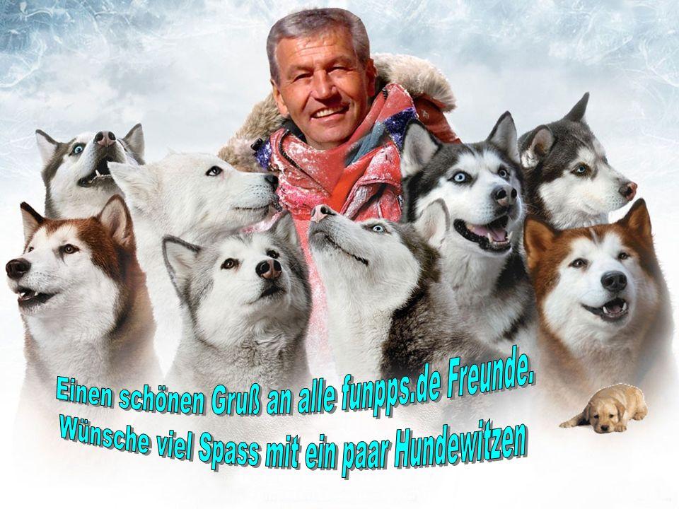 Einen schönen Gruß an alle funpps.de Freunde. - ppt video online ...