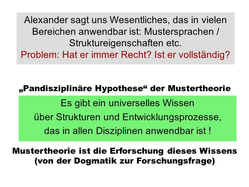 """Pandisziplinäre Hypothese der Mustertheorie"