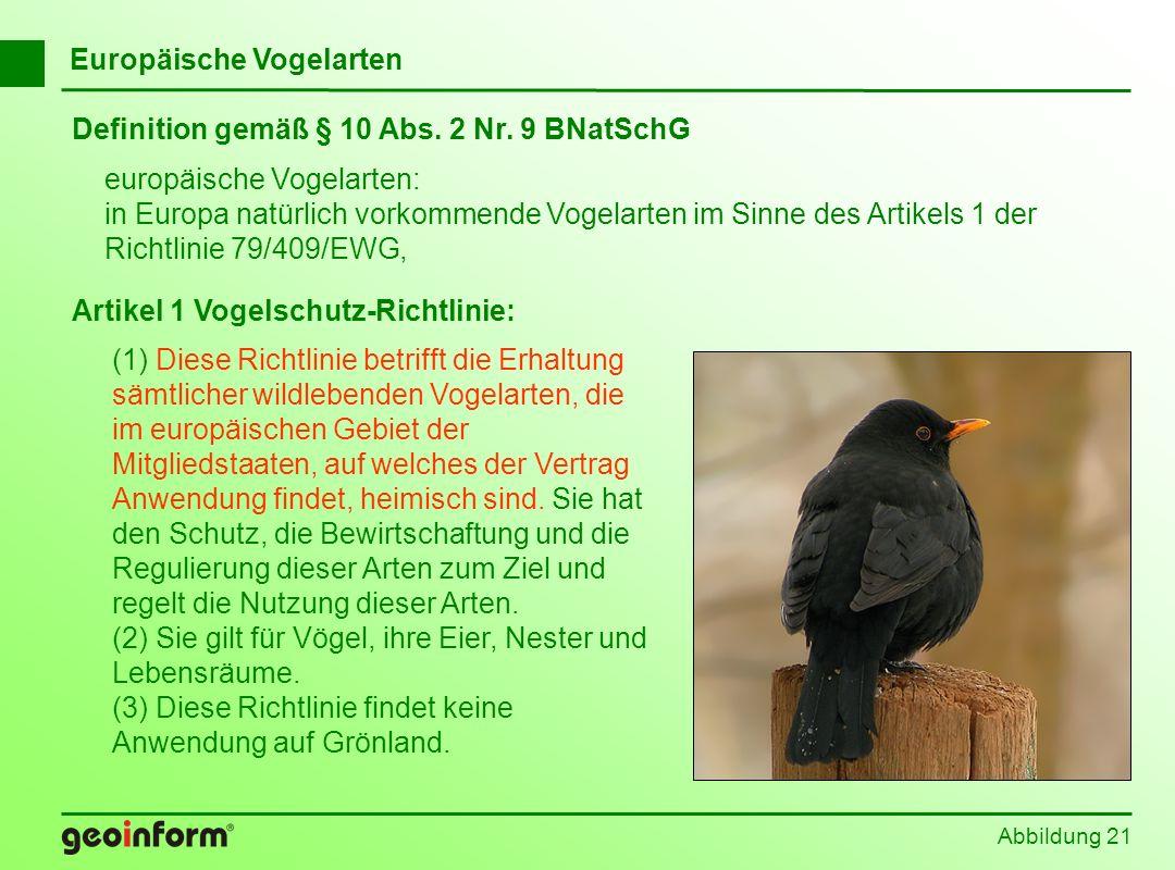 Europäische Vogelarten